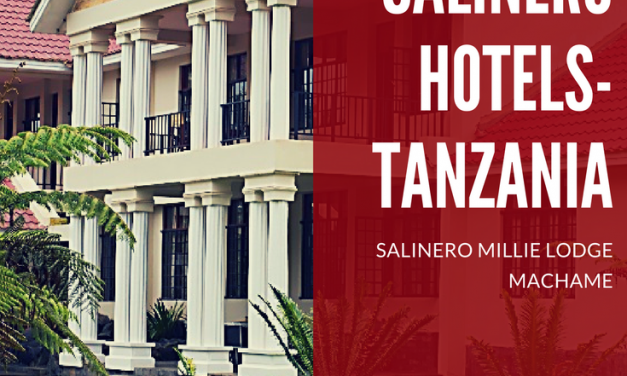 Salinero Millie Lodge-Machame,Tanzania