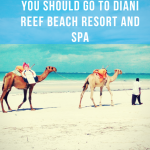 17 Reasons why you should go Diani Reef Resort and Spa this Christmas.(Photo Essay)
