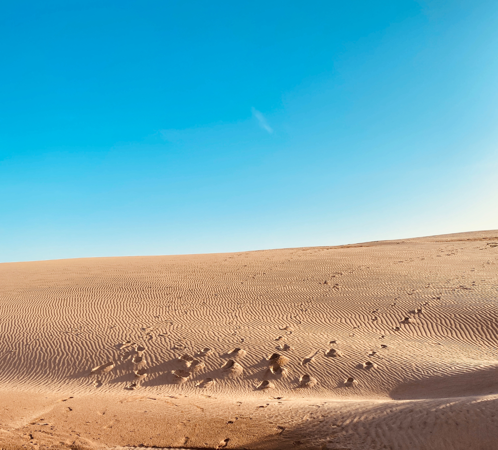 Chalbi Desert